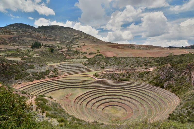 I terrazzi agricoli inca moray Valle sacra Regione di Cusco peru immagine stock libera da diritti