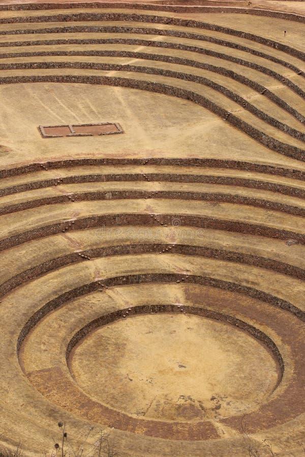 I terrazzi circolari a Moray fotografia stock libera da diritti