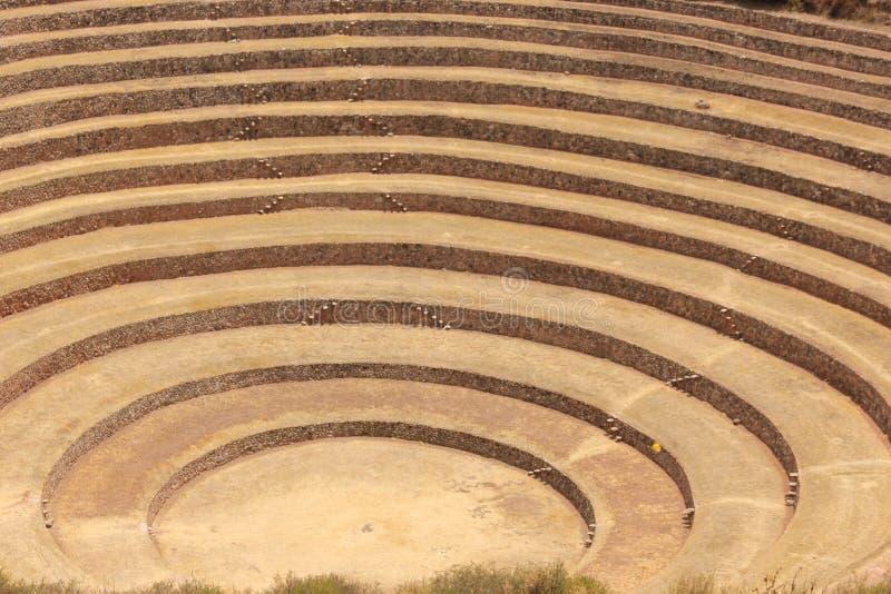 I terrazzi circolari a Moray immagini stock