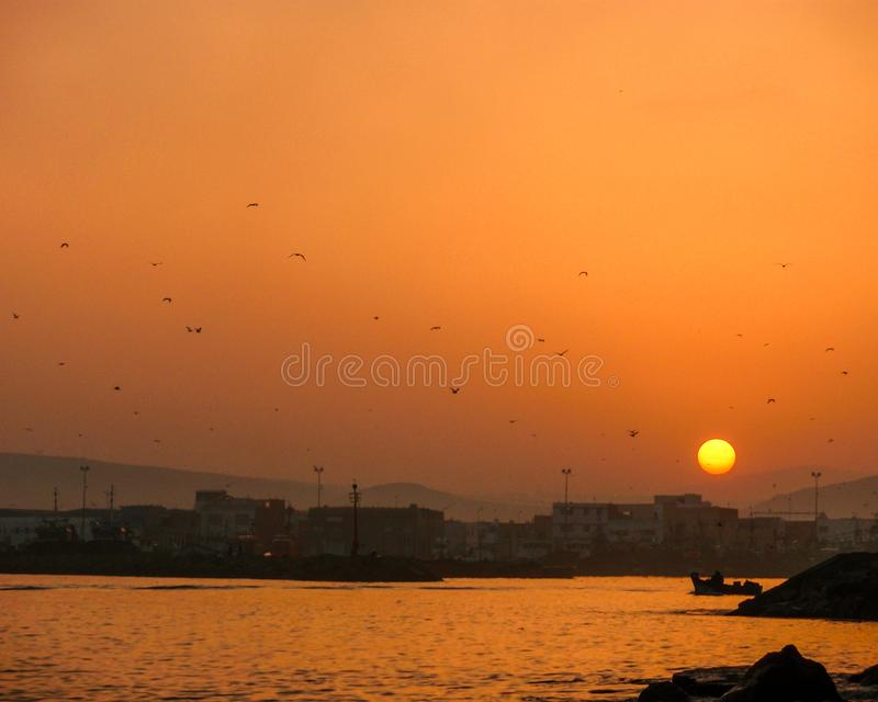 I Always Think Why Birds Choice To Stay In That Place. I take this picture in larache morocco is wonderful place, The sunrise even when I see no sun on the royalty free stock photography