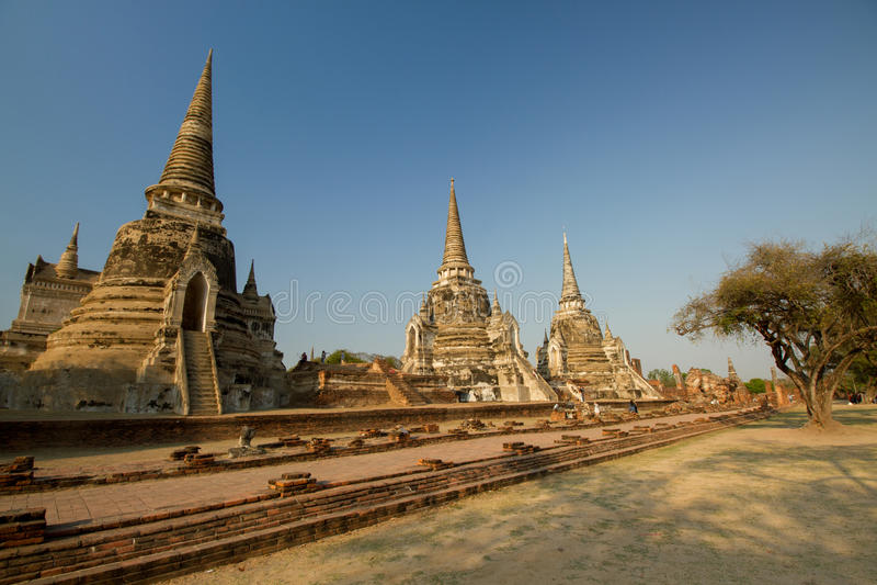 I tre Chedis di Wat Phra Si Sanphet fotografie stock