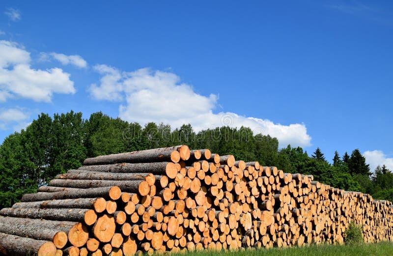 I tronchi di albero abbattuti dalla registrazione armano in legno l'industria fotografia stock libera da diritti