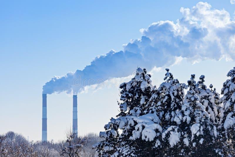 I tubi industriali fumano davanti agli abeti rossi dell'inverno e del cielo blu immagini stock libere da diritti