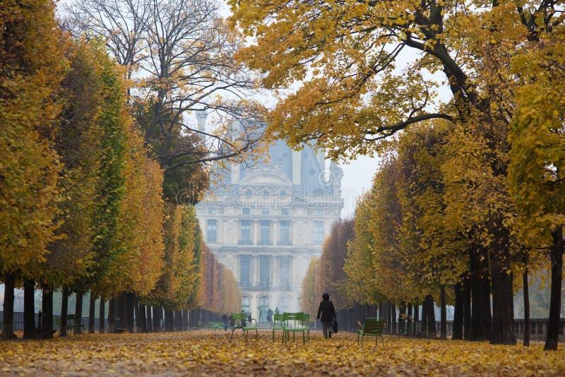I Tuileriesen fotografering för bildbyråer