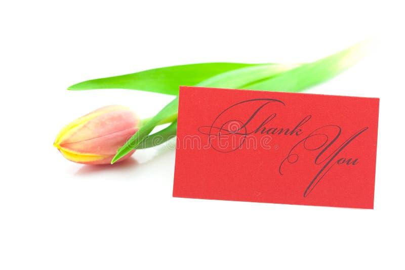 I tulipani e una scheda firmata lo ringraziano immagini stock libere da diritti