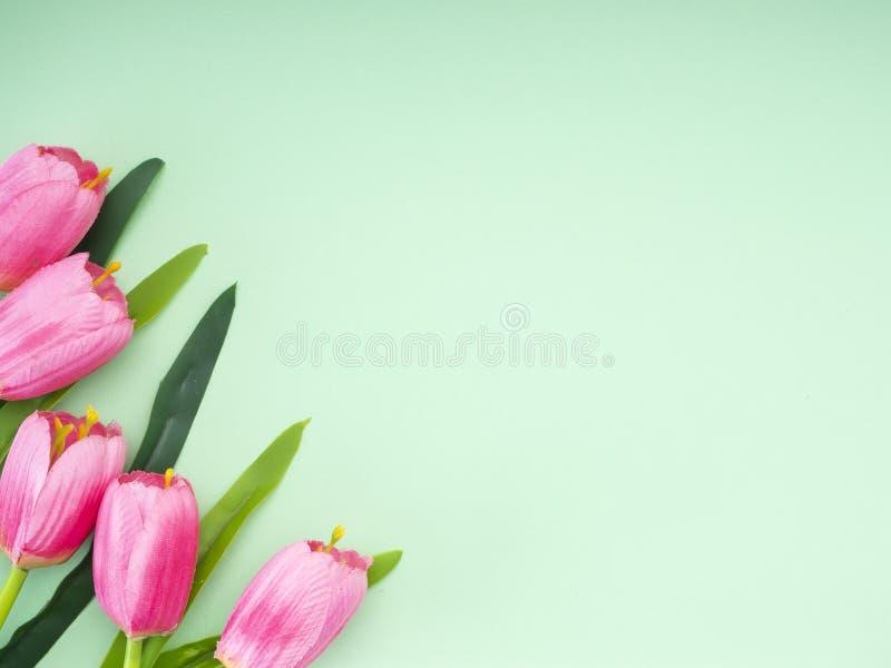 I tulipani rosa il fondo del Libro Verde fotografie stock libere da diritti