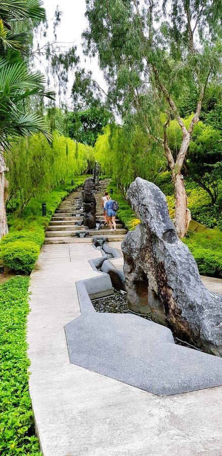 I turisti delle donne stanno camminando sulla scala e stanno vedendo la pianta della natura nel giardino dalla baia a Singapore,  fotografia stock libera da diritti
