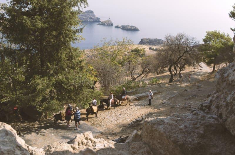 I turisti guidano gli asini in Lindos su un mare del fondo immagine stock libera da diritti