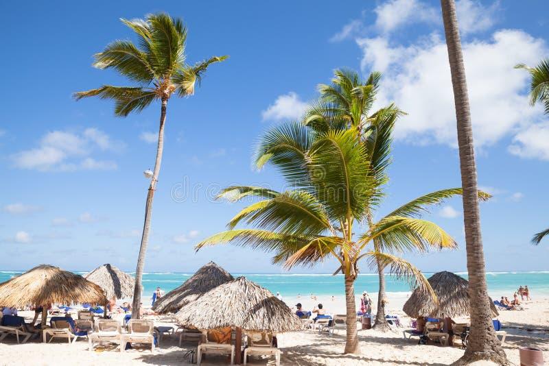 I turisti riposano sotto le palme sulla spiaggia in Punta Cana immagine stock