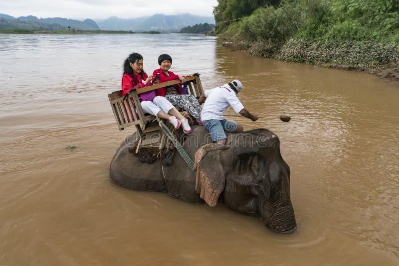 I turisti vanno su trekking degli elefanti fotografia stock