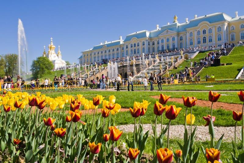 I turisti visitano le viste del parco più basso di Peterhof immagine stock