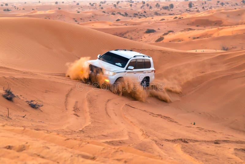 I UAE, Fujairah 2017 19 Il safari fuori strada 11 sulle jeep SUVs nelle sabbie rosso arancio arabe abbandona nel sole del tramont immagini stock libere da diritti