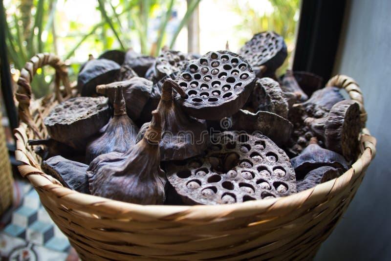 I vecchi baccelli asciutti del loto con i semi ed i fori vuoti si chiudono su per fondo in canestro di vimini Gambo del seme Prog fotografia stock