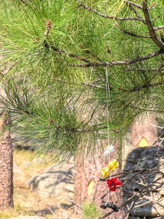 I vestiti variopinti ed i pacchi disposti vicino ai diavoli si elevano nel Wyoming immagini stock