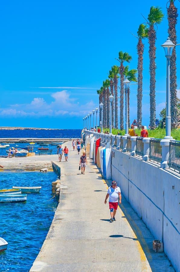 I villeggianti al porto della baia di St Paul fotografie stock libere da diritti