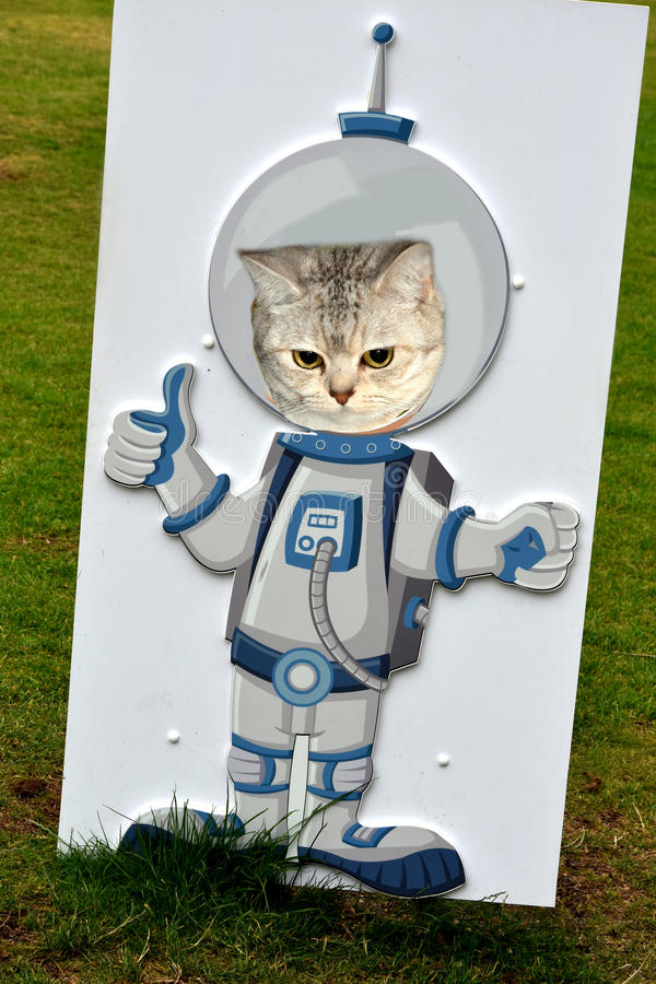 I want to be an astronaut. Cat behind a wooden dummy astronaut looking up through head hole