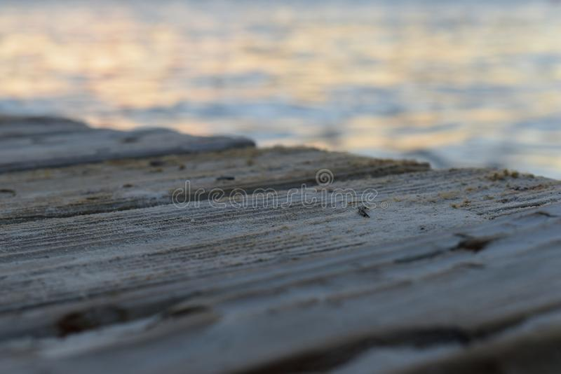 Dock in Cancun ocean royalty free stock photos