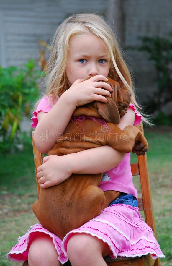 Child with puppy. Cute little Caucasian blond girl with serious facial expression protecting her Rhodesian Ridgeback puppy stock photography