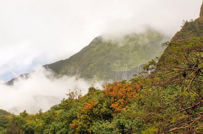 Iao dolina, Maui, Hawajska wyspa, usa fotografia stock