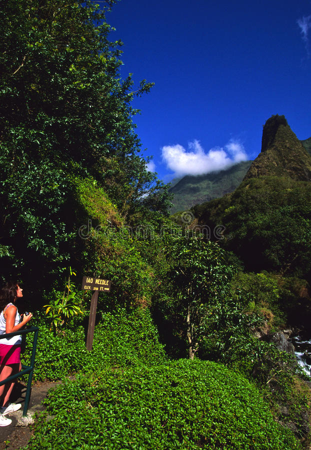 Free Iao Needle Maui Royalty Free Stock Image - 12748786
