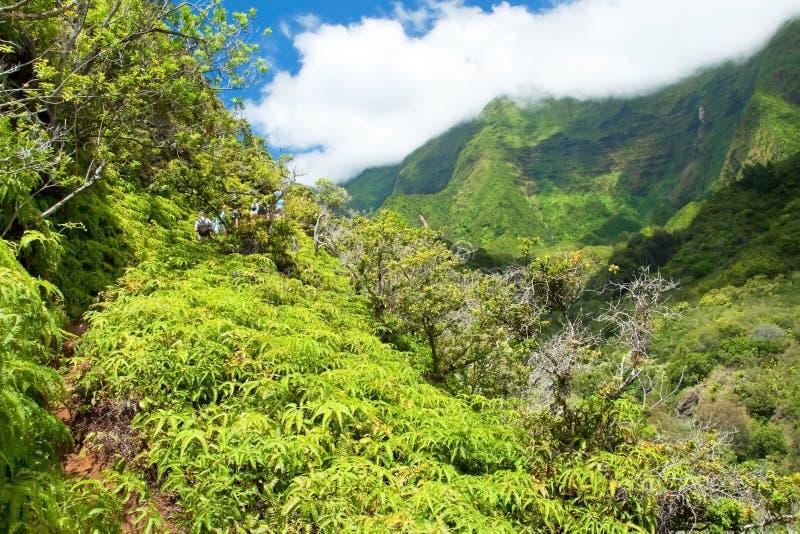 Iao stanu Dolinny park na Maui Hawaje zdjęcia stock