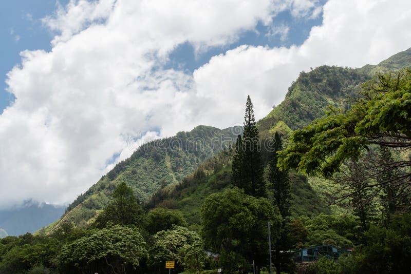 Iao stanu Dolinny park, Zachodni Maui obraz royalty free