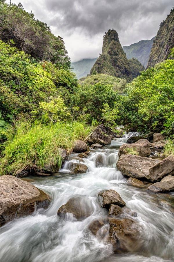 Iao-Tal Maui lizenzfreies stockbild