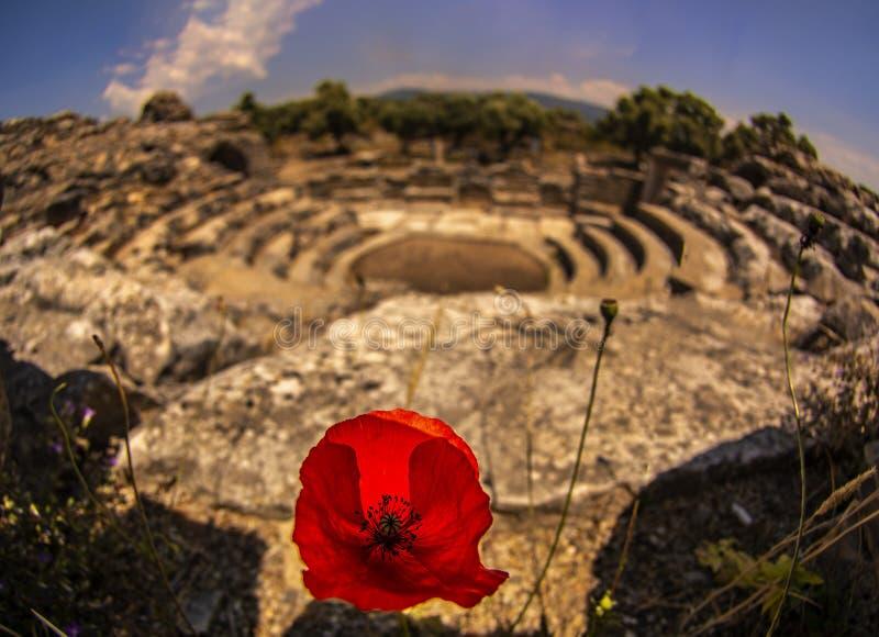 Iasos古董城市米拉斯土耳其 库存照片