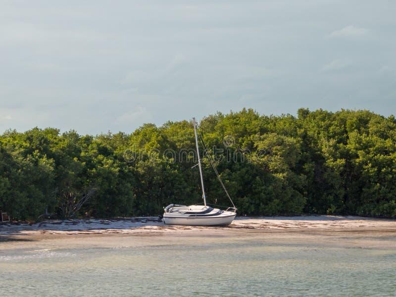 Iate em terra, naufrágio, barco estacionado em uma praia na ilha de Holbox foto de stock royalty free