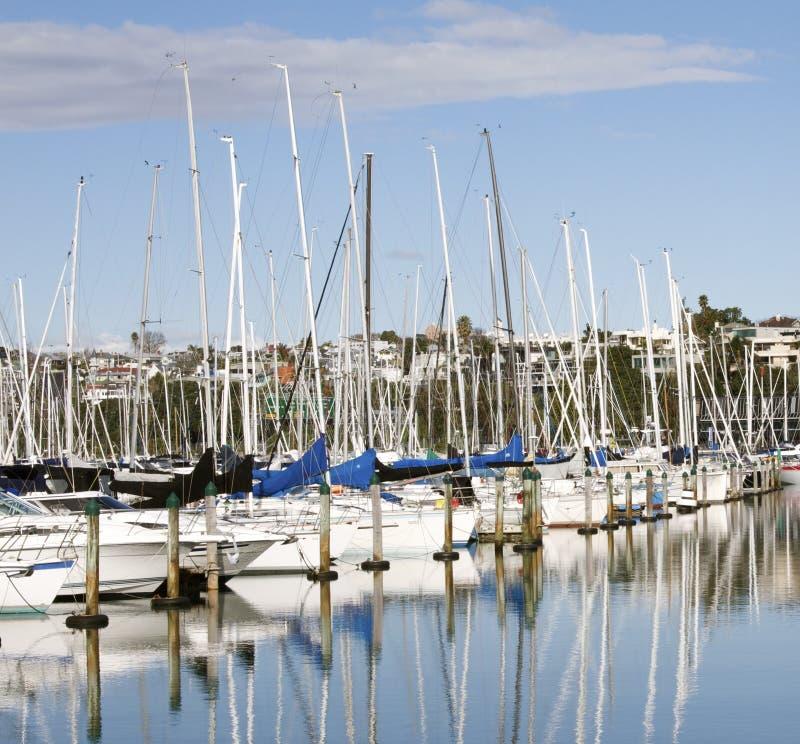 Iate em um porto em Auckland fotos de stock royalty free