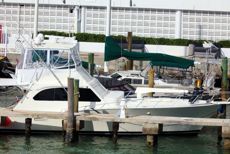 Iate luxuoso da vida no barco de Miami Beach Florida as Caraíbas imagens de stock royalty free