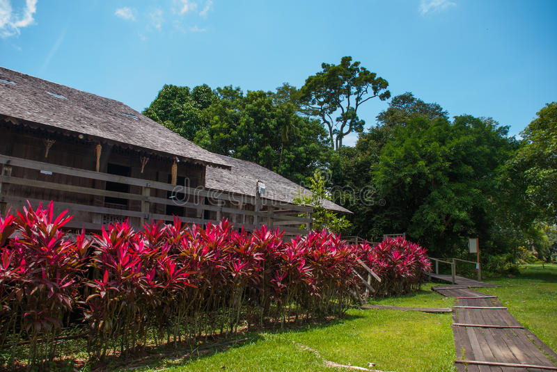 Traditional wooden houses and bushes of red color. Iban longhouse Kuching to Sarawak Culture village. Malaysia royalty free stock photos