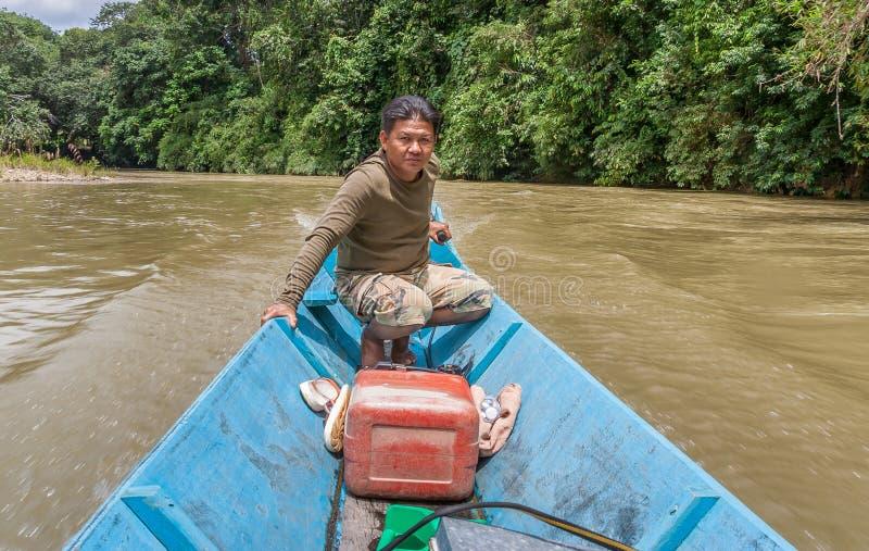 Iban man som styr hans barkass upp floden på Borneo fotografering för bildbyråer
