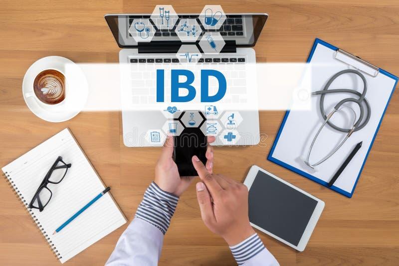 IBD -激动的肠炎 医疗概念 库存图片