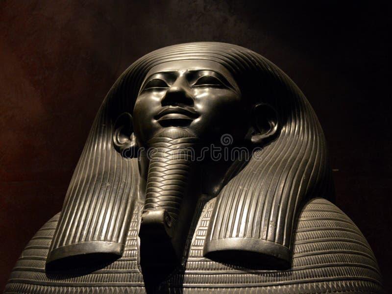 Ibi guds fru av Amun royaltyfria foton