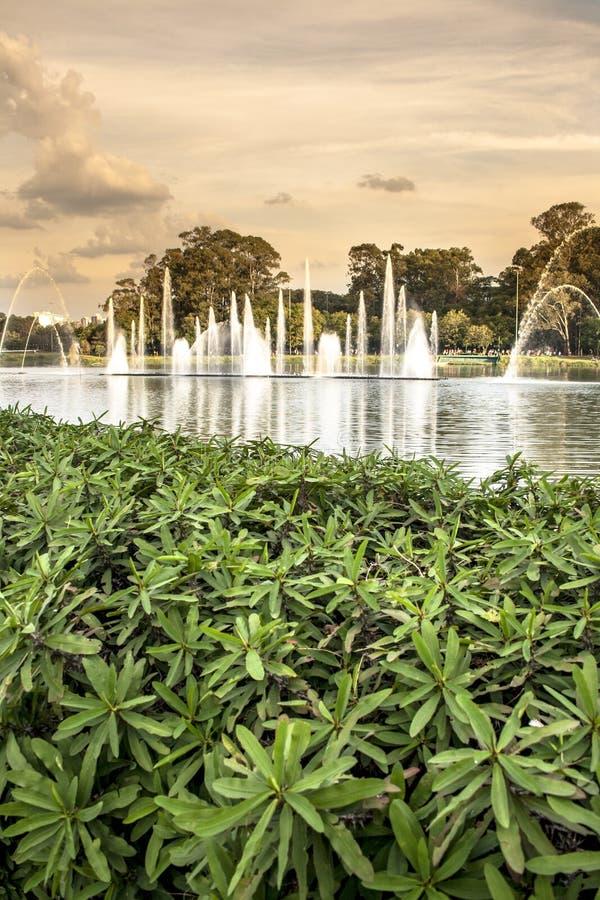 Ibirapuera parkerar royaltyfri fotografi