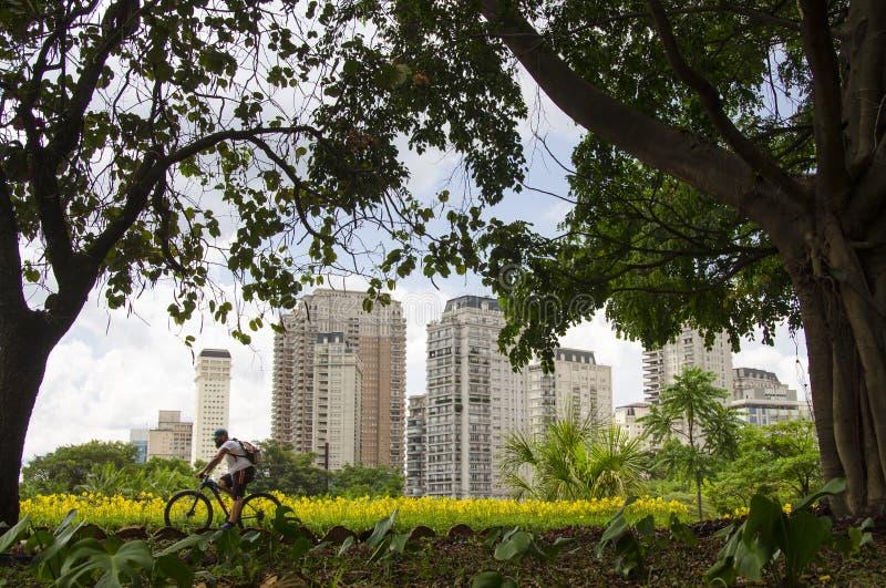 Ibirapuera parkerar royaltyfri foto