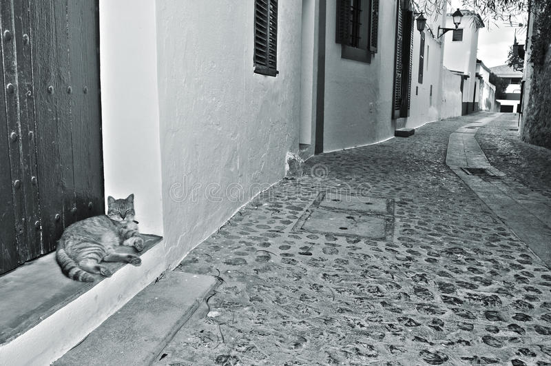 Ibiza城镇,巴利阿里群岛,西班牙老城镇街道  库存图片