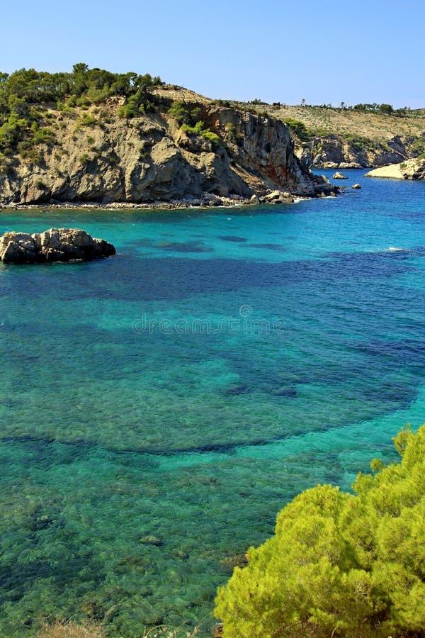 Download Ibiza Island stock image. Image of beautiful, pine, deep - 23004843