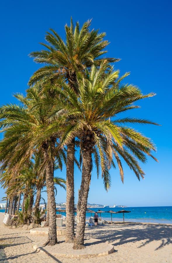 Ibiza Playa d En Bossa beach in Balearic Islands. Ibiza Playa d En Bossa beach in Sant Josep of Balearic Islands royalty free stock image