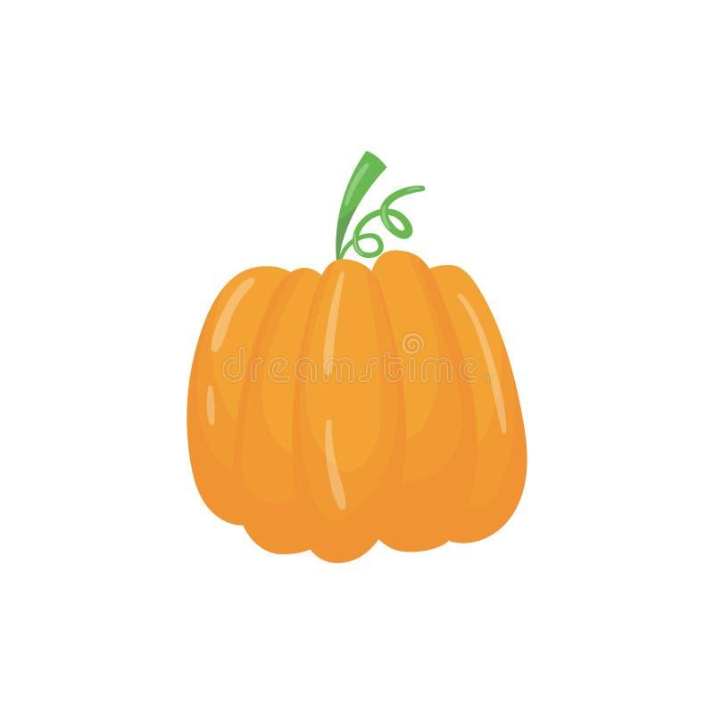 Icône de bande dessinée de grand potiron orange lumineux Usine herbacée mûre Aliment biologique Produit agronomique Élément plat  illustration stock
