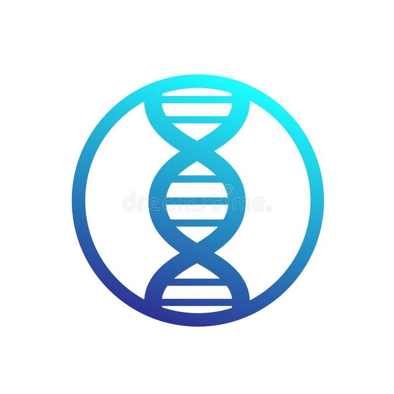 Icône de brin d'ADN en cercle illustration de vecteur