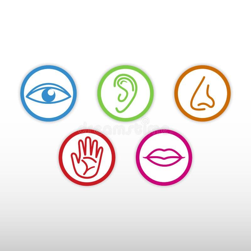Icône de cinq sens illustration de vecteur