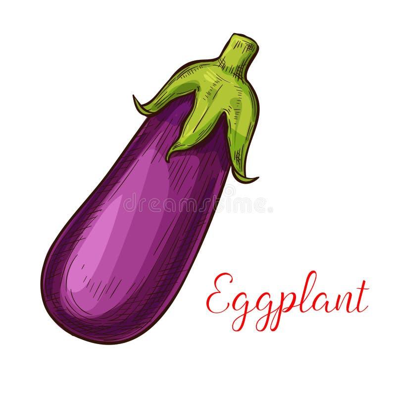 Icône de légume de croquis de vecteur d'aubergine illustration de vecteur