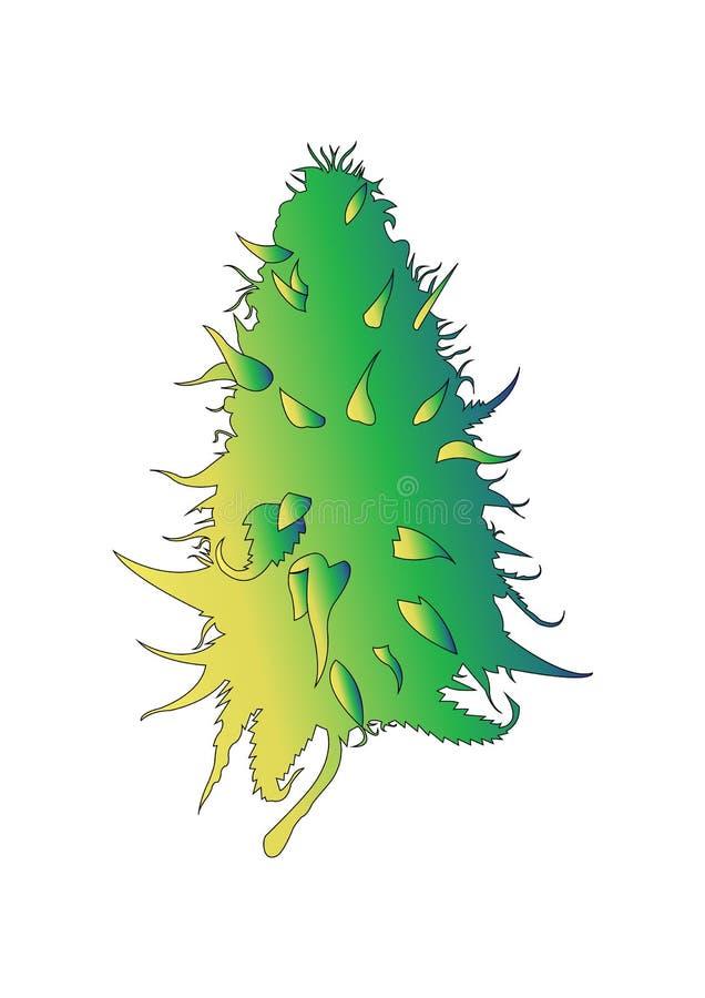Icône de logo de vecteur de chanvre de cannabis de kola illustration stock