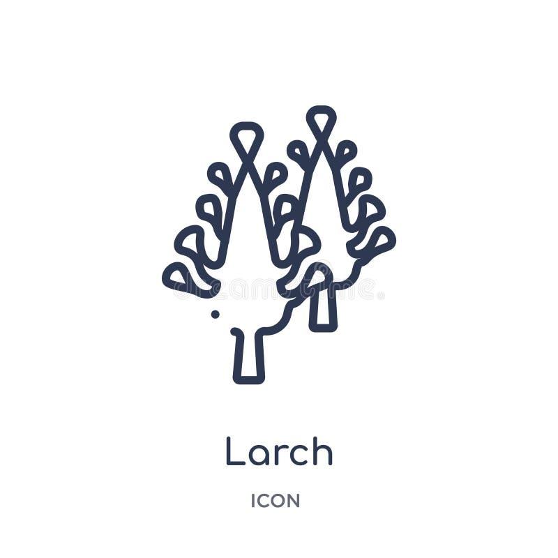 Icône de mélèze de collection d'ensemble de nature Ligne mince icône de mélèze d'isolement sur le fond blanc illustration libre de droits