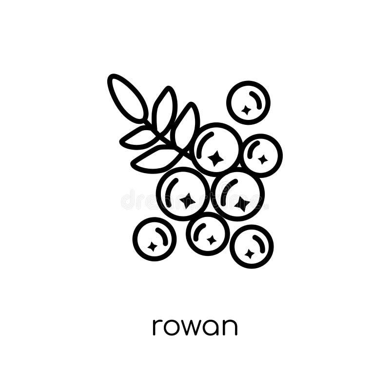 Icône de sorbe Icône linéaire plate moderne à la mode de sorbe de vecteur sur le blanc illustration stock