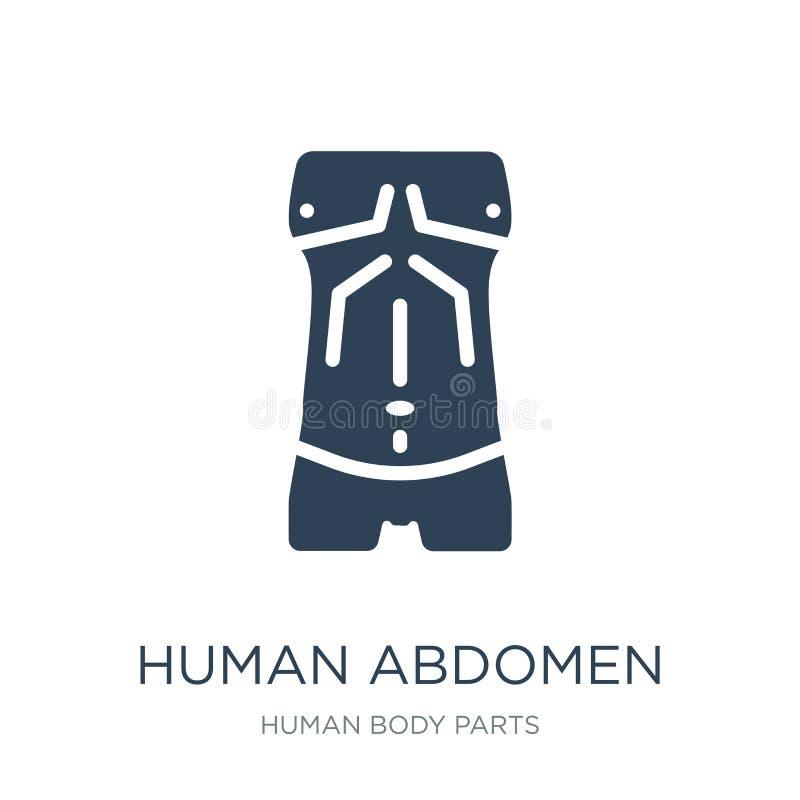 icône humaine d'abdomen dans le style à la mode de conception Icône humaine d'abdomen d'isolement sur le fond blanc icône humaine illustration de vecteur