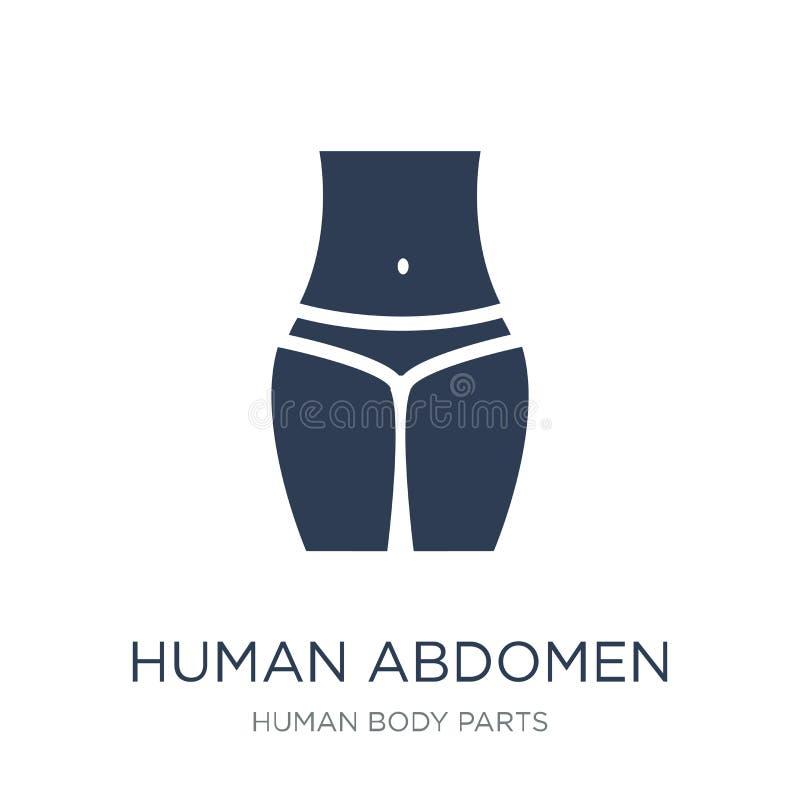 Icône humaine d'abdomen Icône humaine d'abdomen de vecteur plat à la mode sur le whi illustration libre de droits