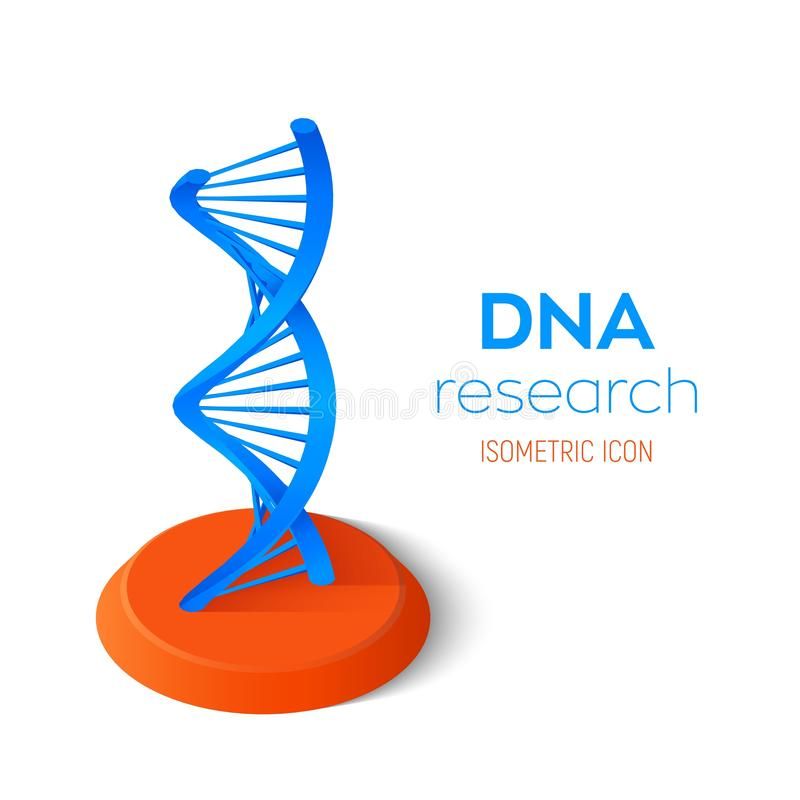 Icône isométrique d'ADN Maille de structure de molécules d'ADN de Wireframe Calibre editable de code d'ADN Concept de la science  illustration stock